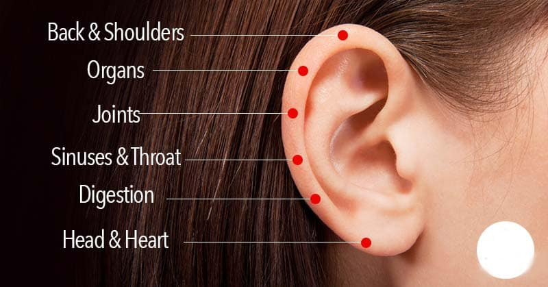 6 Touch-Points On The Ear To Heal Everything From a Stiff