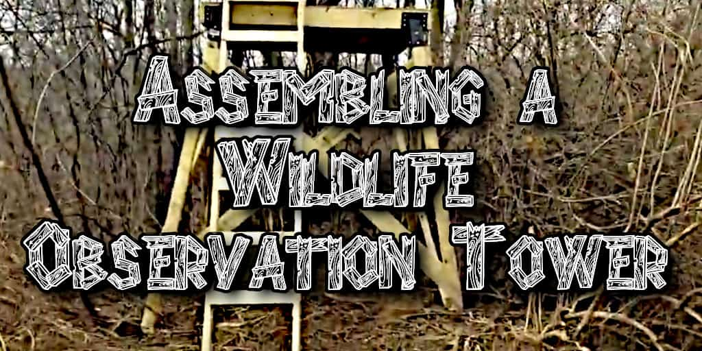 Assembling a Wildlife Observation Tower